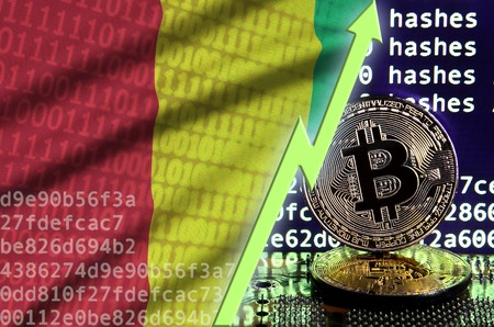 Guinea flag and rising green arrow on bitcoin mining screen and two physical golden bitcoins. Concept of high conversion in cryptocurrency mining