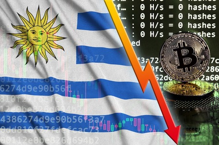 Uruguay flag and falling red arrow on bitcoin mining screen and two physical golden bitcoins. Concept of low conversion in cryptocurrency mining Banco de Imagens