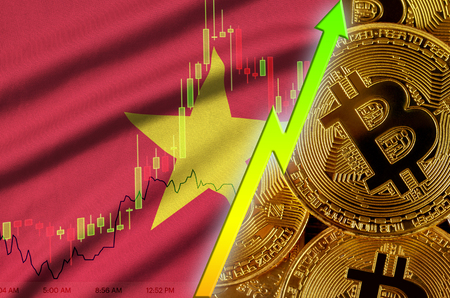 Vietnam flag  and cryptocurrency growing trend with many golden bitcoins. Concept of raising Bitcoin in price or high conversion in cryptocurrency mining