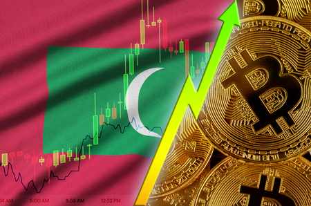 Maldives flag  and cryptocurrency growing trend with many golden bitcoins. Concept of raising Bitcoin in price or high conversion in cryptocurrency mining Stock fotó