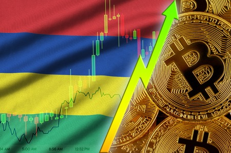 Mauritius flag  and cryptocurrency growing trend with many golden bitcoins. Concept of raising Bitcoin in price or high conversion in cryptocurrency mining 免版税图像