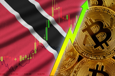 Trinidad and Tobago flag  and cryptocurrency growing trend with many golden bitcoins. Concept of raising Bitcoin in price or high conversion in cryptocurrency mining 免版税图像