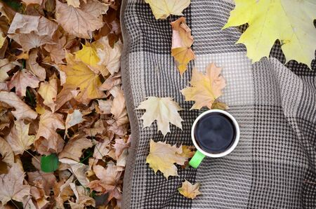 Autumn leaves and hot steaming cup of coffee lies on checkered plaid outdoors. Fall time concept atmospheric mood flat lay composition Фото со стока - 132312690