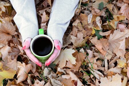 Woman wearing white sweater in their hands holding a green coffee cup in a relaxed mood on foliage background. Flat lay top view