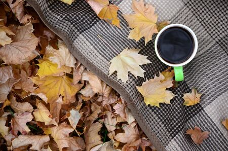 Autumn leaves and hot steaming cup of coffee lies on checkered plaid outdoors. Fall time concept atmospheric mood flat lay composition