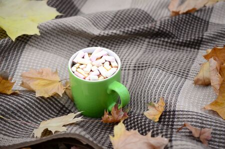 Autumn leaves and hot steaming cup of coffee lies on checkered plaid outdoors. Fall time concept atmospheric mood composition Reklamní fotografie