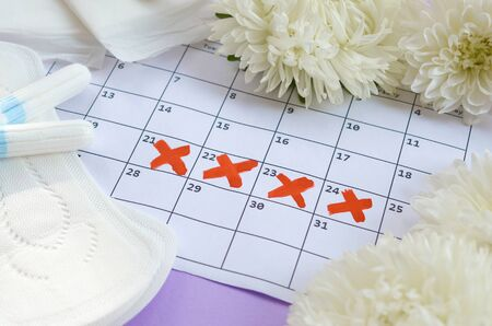 Menstrual pads and tampons on menstruation period calendar with white flowers on lilac background. Aspects of women wellness in monthlies period. Woman critical days gynecological menstruation cycle