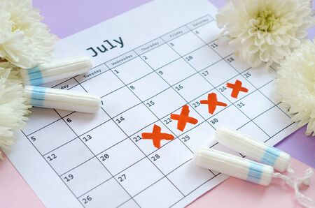 Menstrual tampons on menstruation period calendar with white flowers on lilac and pink background. Aspects of women wellness in monthlies period. Woman critical days gynecological menstruation cycle