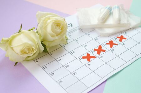 Flat lay composition with white roses and menstrual tampons and pad packs on menstruation period calendar and blue pink and lilac pastel background. Gynecology concept. Critical days pms period items