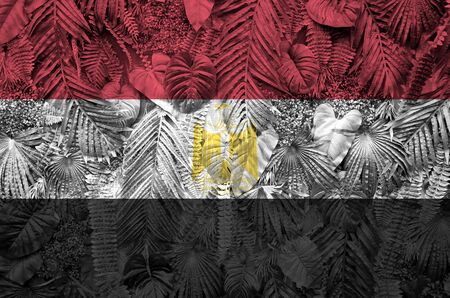 Egypt flag depicted on many leafs of monstera palm trees. Trendy fashionable background Banco de Imagens