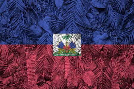 Haiti flag depicted on many leafs of monstera palm trees. Trendy fashionable background