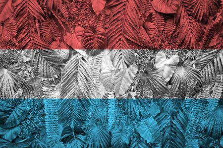Luxembourg flag depicted on many leafs of monstera palm trees. Trendy fashionable background