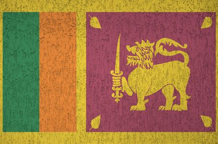 Sri Lanka flag depicted in bright paint colors on old relief plastering wall close up. Textured banner on rough background