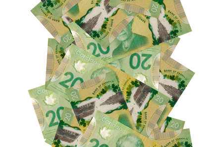 20 Canadian dollars bills flying down isolated on white. Many banknotes falling with white copy space on left and right side Zdjęcie Seryjne