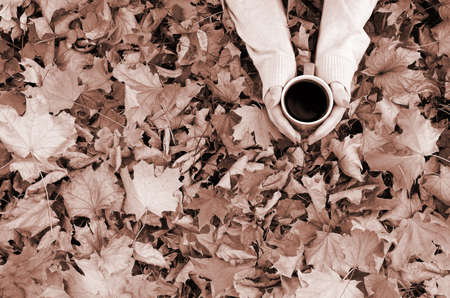 Woman wearing white sweater in their hands holding a big coffee cup in a relaxed mood on foliage background. Flat lay top view