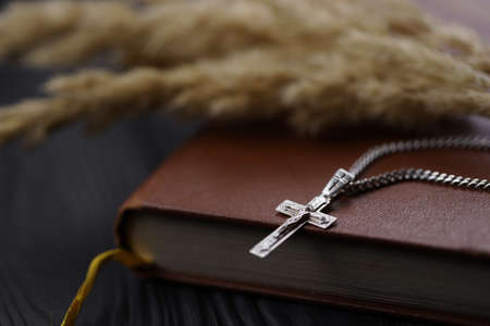 Silver necklace with crucifix cross on christian holy bible book on black wooden table. Asking blessings from God with the power of holiness, which brings luck Reklamní fotografie