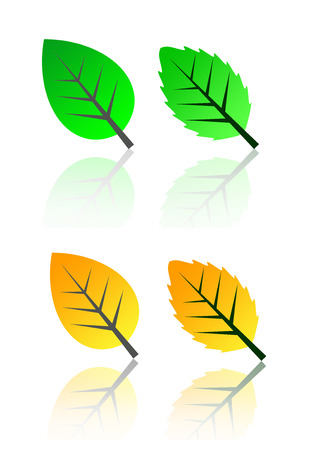 4 green yellow orange fig leave Vector