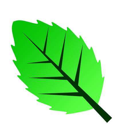 green leave icon symblol Stock Vector - 24902295