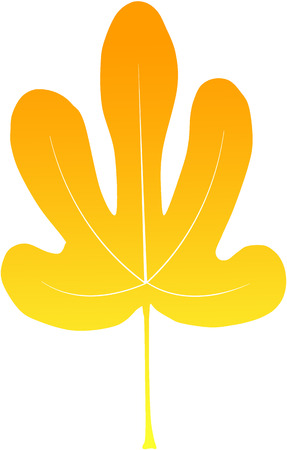 nice yellow fig leave Stock Vector - 24902299