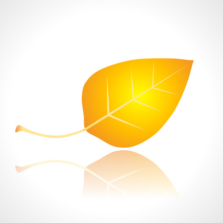 jednolitego: jeden żółty jesienny liść