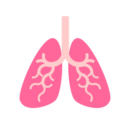 Human lung vector.