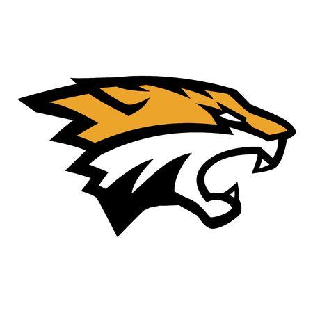 Tiger Logo Template 写真素材