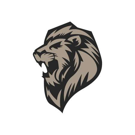 Lion Sport Logo Vector Template Stock fotó