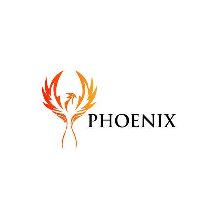 Phoenix   Template