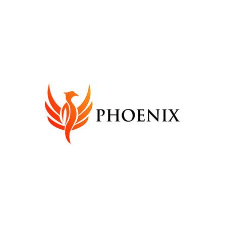 the template: Phoenix   Template