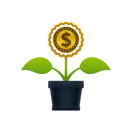 Flower with dollar coin in flower pot on white background. Financial growth concept design.