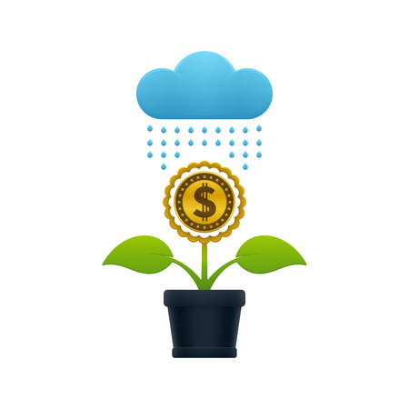 Raining on the flower with dollar coin in a flower pot on white background. Financial growth concept design.