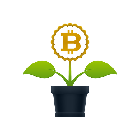 Flower with bitcoin in flower pot on white background. Financial growth concept design. Illustration