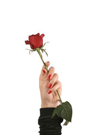 valentine's day Stock Photo - 5503025