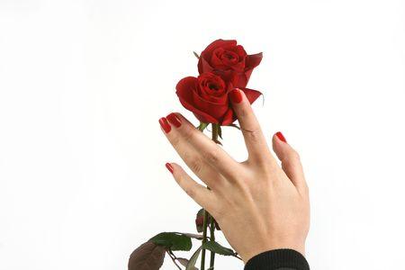 valendines day photo