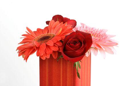 flower Stock Photo - 5503246