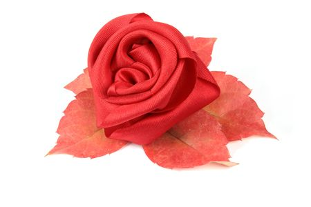 red rose Stock Photo - 5711537