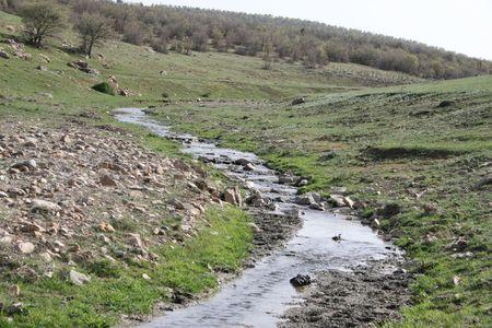 cane creek: spring Stock Photo