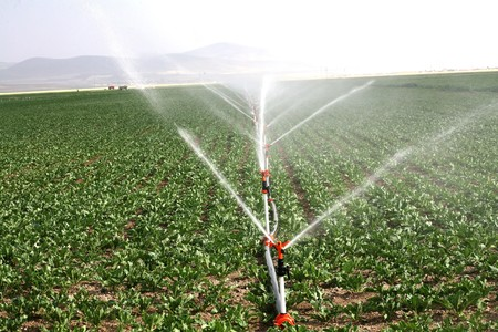 Irrigation sprinklers water a farm field against late afternoon sun  Banco de Imagens