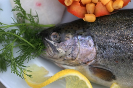 good for your health in a fish feast photo