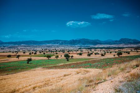 farmland: farmland in konya