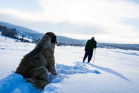 Excursionista en invierno en las montañas