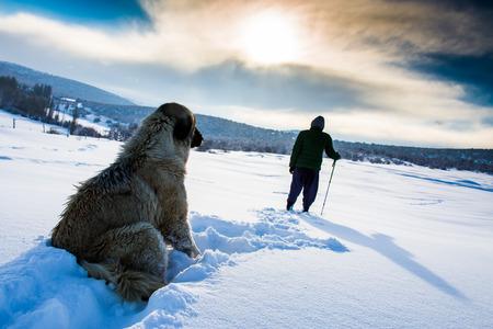 Caminante en invierno en las montañas