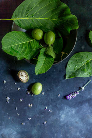 Compositions of green walnut on special dark ground