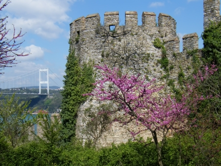 rumeli: Rumeli Fortress, Istanbul Turkey Stock Photo