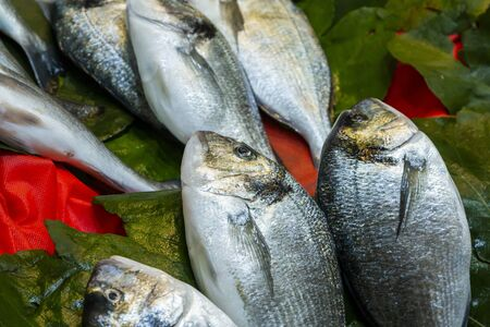 Fish market in istanbul, Turkey 写真素材