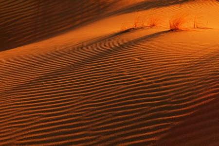 Shadows and patterns in Singing Dunes, Kazakhstan