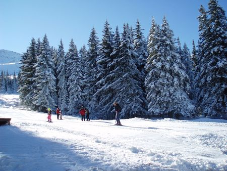 mn: Bulgaria-Vitosha mn.,winter view