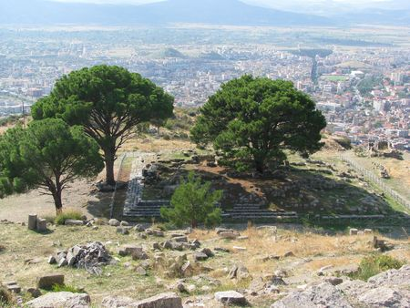 Turkey-Pergamon,place of pine trees, where was the temple of Zeus.Temple is transportation of parts in Germany Stock Photo