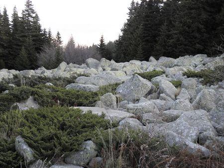 eiszeit: Mor�nen verlie� nach der Eiszeit zum Vitosha Berg zwischen 1800 und 2000 Metern.