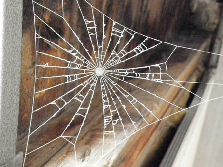 Cross spider web of the beams of the attic. Stock Photo - 11738648